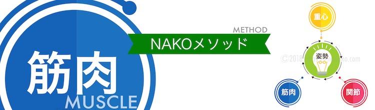 NAKOメソッドの大切な要素である筋肉について